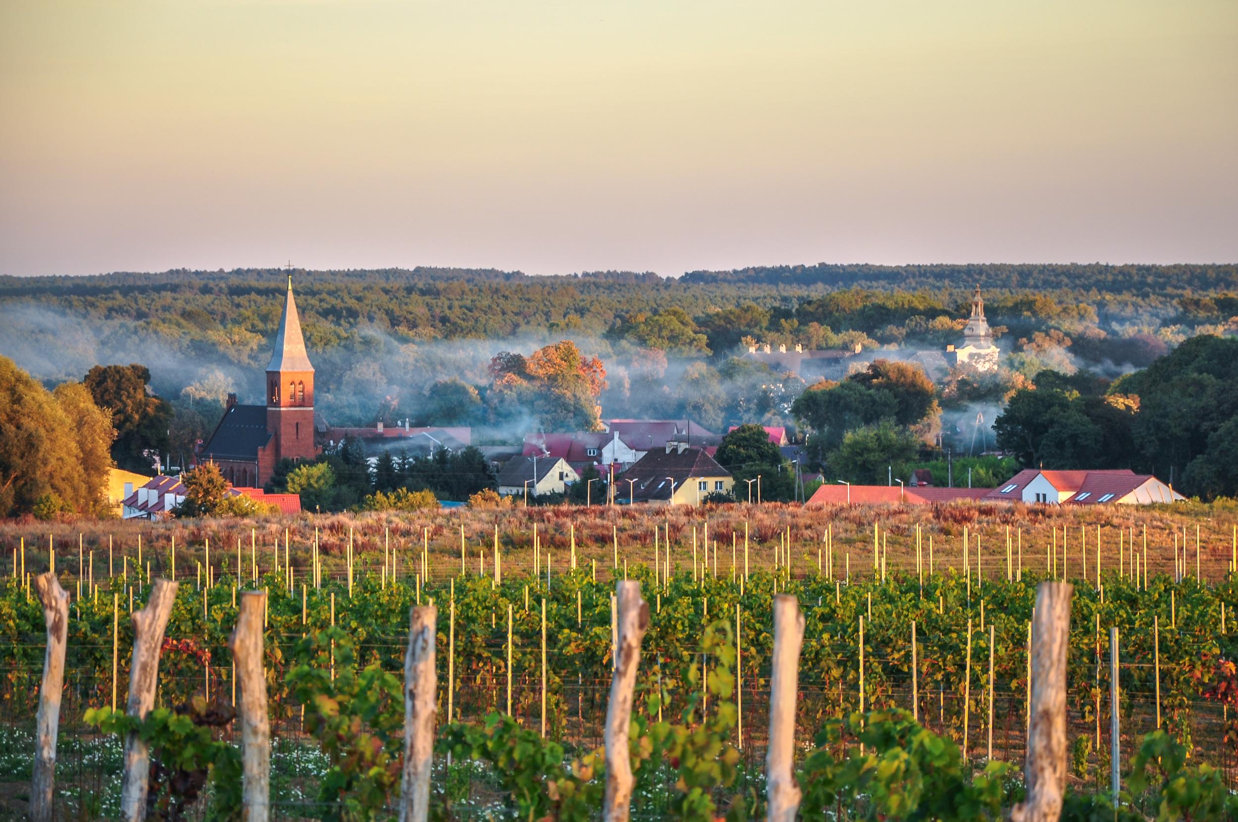 Co warto zwiedzić w województwie lubuskim?