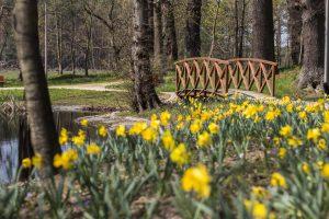 Park w Kiełpinie