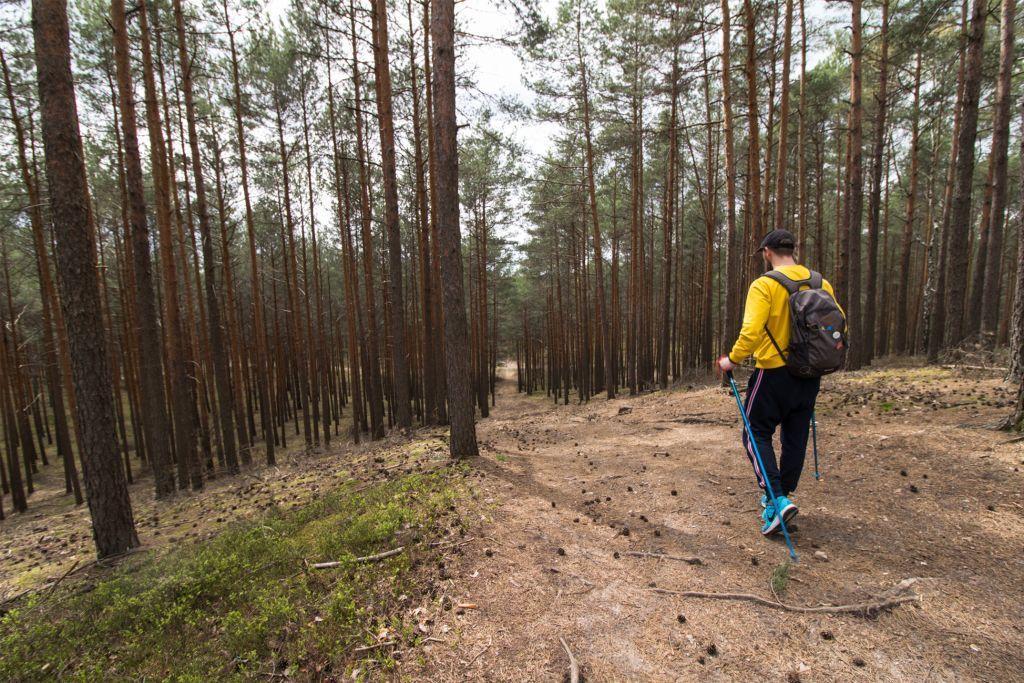 Spacer po stromym odcinku szlaku nordic walking Szybki Bismarck.